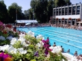 activite-natation-nogent