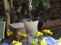 puits-fleuri