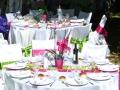 table-jardin-vert